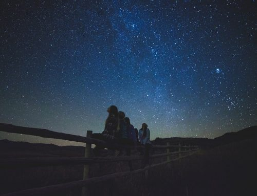 Young people are just amazed at the night sky