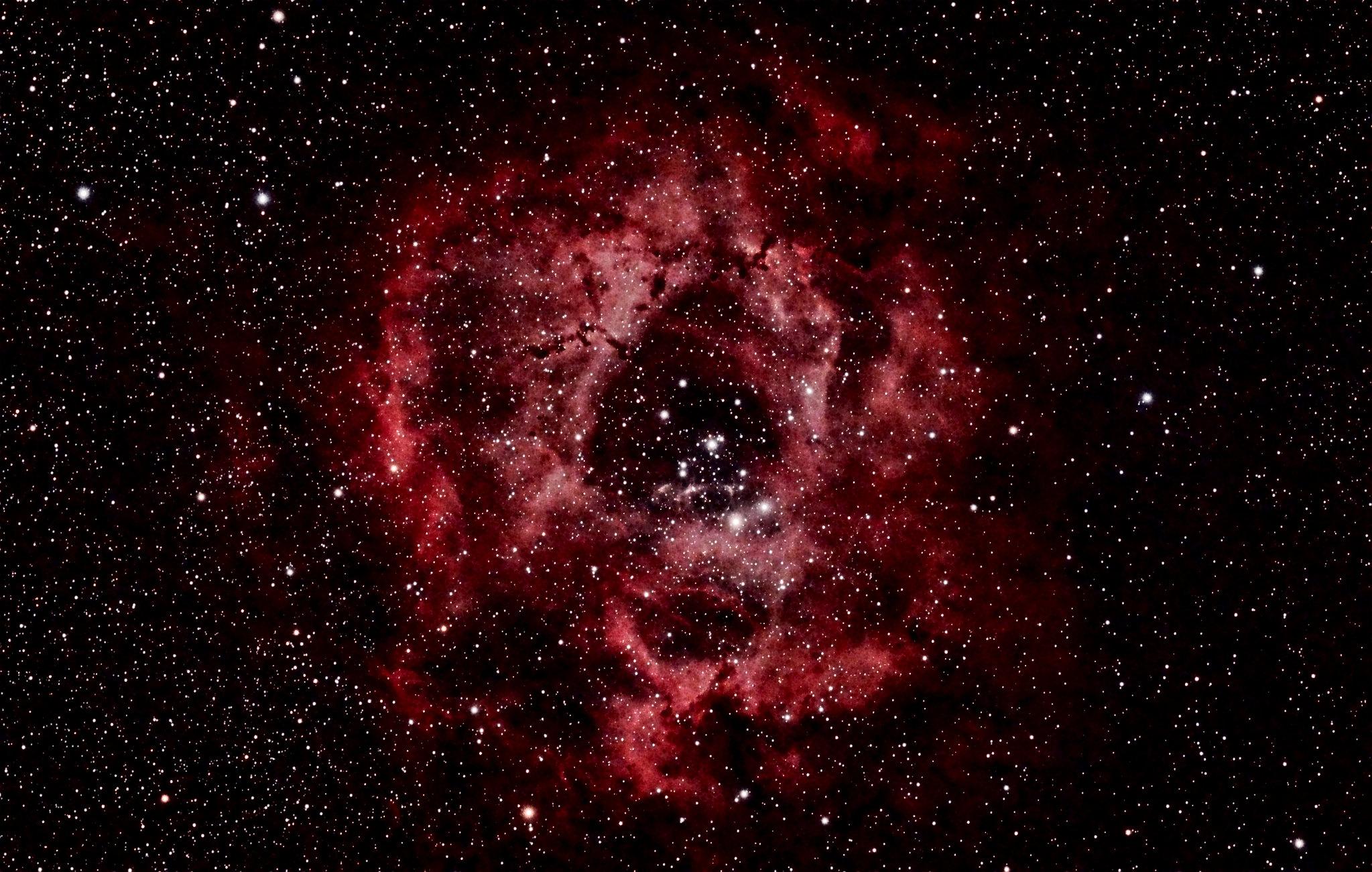 Rosette Nebula by Mike McGovern