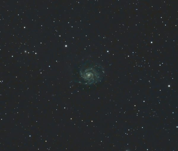 M101 Pinwheel Galaxy Pat Devine Williams Optics Redcat 51 ZWO183mc pro Optolong l-pro filter