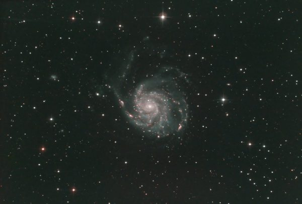 Pinwheel Galaxy or M101 (Ian A Smith) Skywatcher 200p, NEQ6 mount, Altair Triband filter, Baader MPCC M3 coma corrector, ASI294MC Pro at -20C. NINA Observatory Software. 42 x 300 second (3 hour 30 minutes) at Gain 350, Offset 30, dithering every 3rd frame, 40 dark frames, 40 flat fields, 40 dark flat frames. Processed in APP (using Ha-OIII formula), Topaz de-noise and Photoshop. . Wind was quite gusty