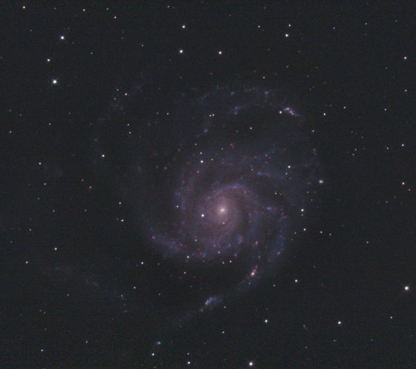 M101 Pinwheel Galaxy (Nigel Goodman) 010421 SLCC guided LProMax