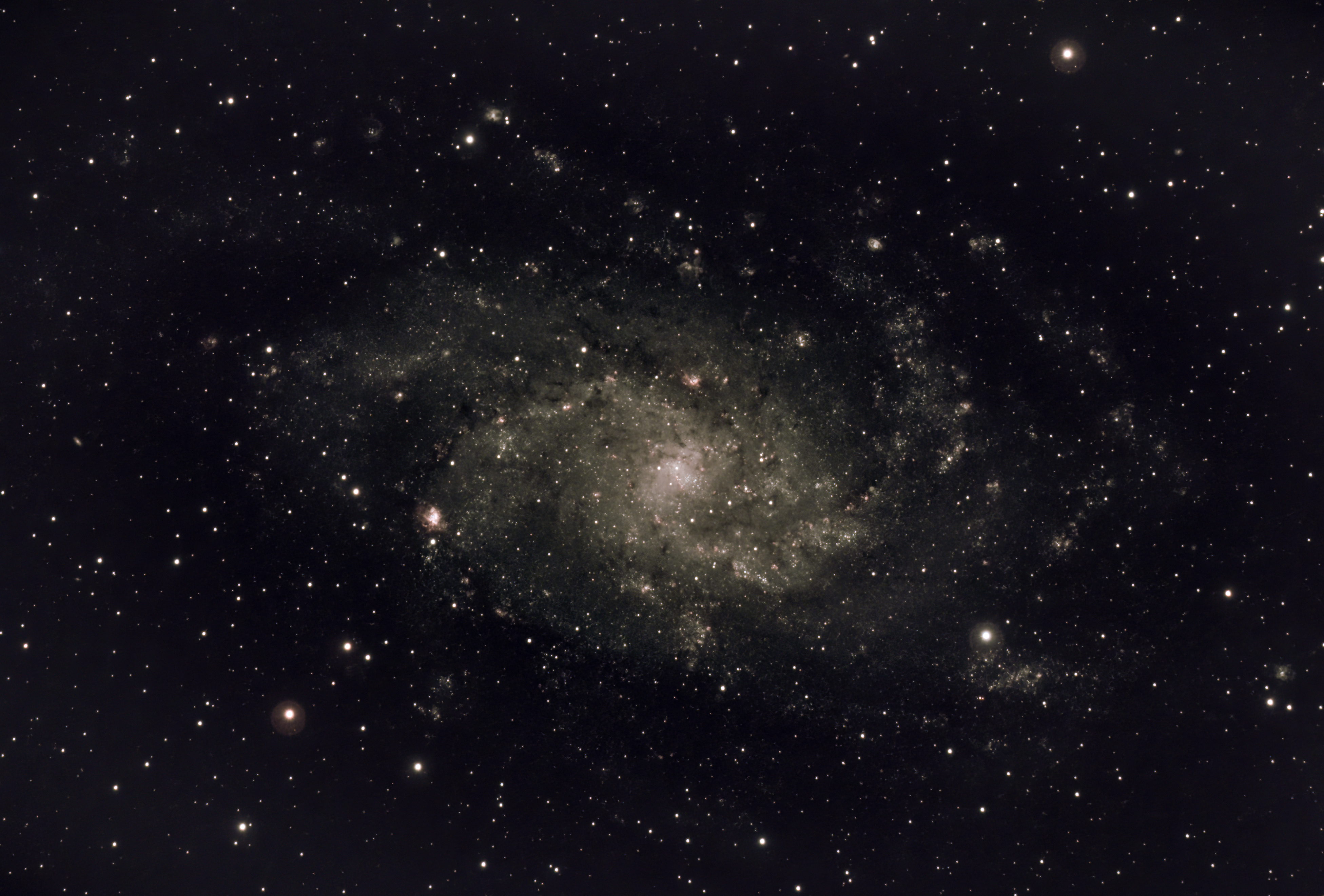 M33 or Triangulum Galaxy (Ian A Smith) Skywatcher 190MN, NEQ6 mount, Altair Tri-band filter, ASI294MC Pro at -20C. 29 x 5 minute exposures (2 hour 25 minutes) at Gain 275, Offset 30 , 50 dark frames and 50 flat fields, 50 dark flat frames. Processed in APP, Pixinsight, Topaz de-noise and Photoshop. 27th September 2021, a bit windy.