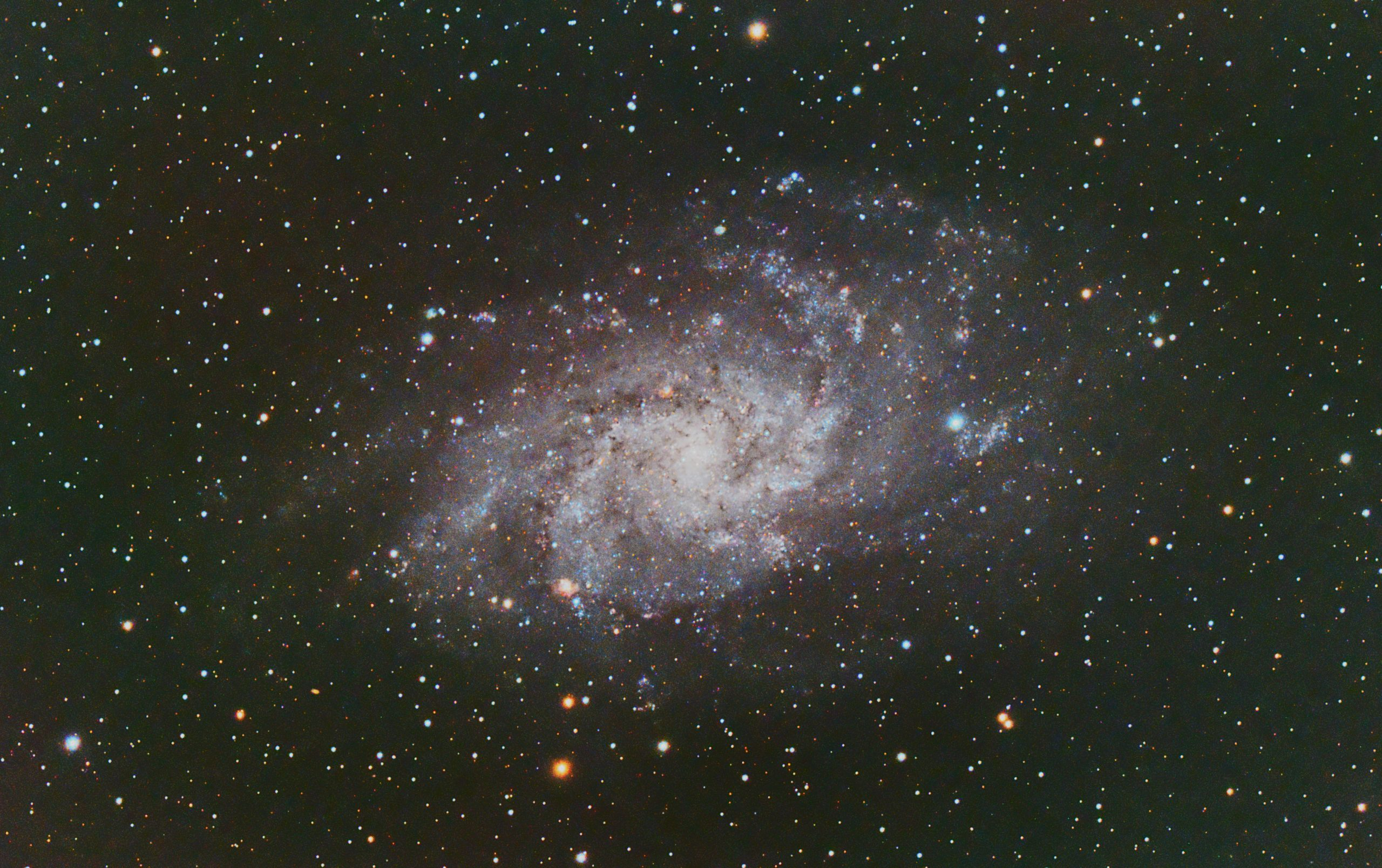 """M33 (Pat Devine) Edinburgh Bortle 7/8 zone, 11th Step 2021 Celestron RASA 8"""", ZWO 183mc pro, Optolong l-pro filter, ZWO ZWO ASI Air Pro, Sky-Watcher HEQ5 Pro 36 X 60s and 22x 120s lights; with flats, darks and bias, Gain 122 at -10C. Processed in APP and Pixinsight (small crop to get rid of annoying gradient that resisted other attempt to process it away)"""